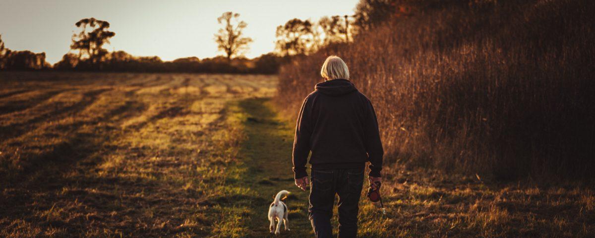 chó và người